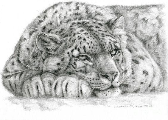 Рисунок карандашом (мастер-класс)